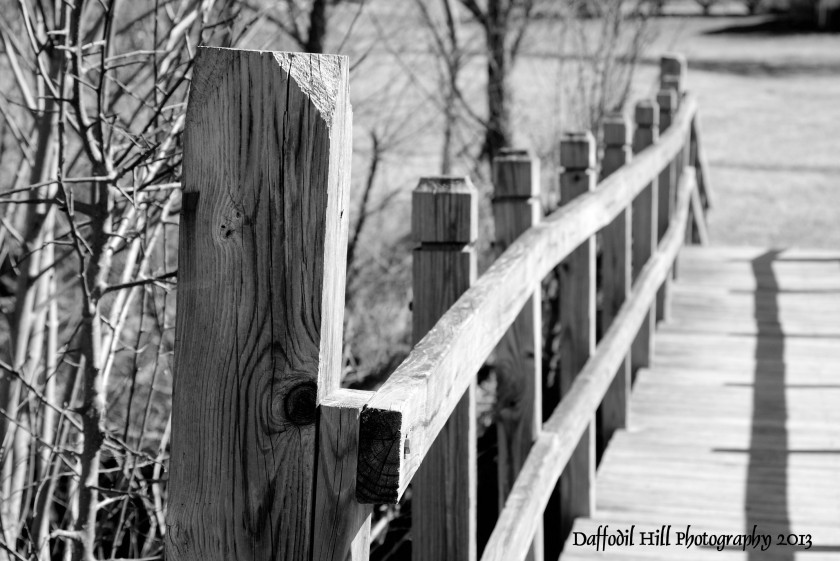 Life has many bridges we must cross. A personal reflection in B&W.
