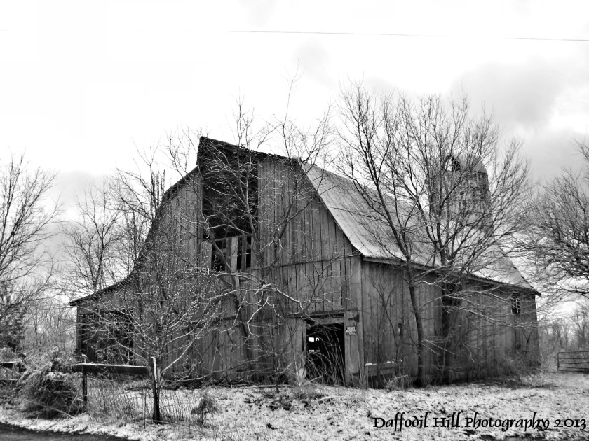 I captured this wonderful old barn with my Powershot S3is.