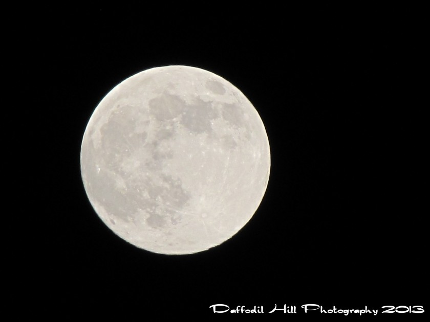 """I took this last night using a tripod and my Powershot SX10is on full manual. I was having a issue with it being to beige and set the white balance on """"florescent"""" and this is the result."""