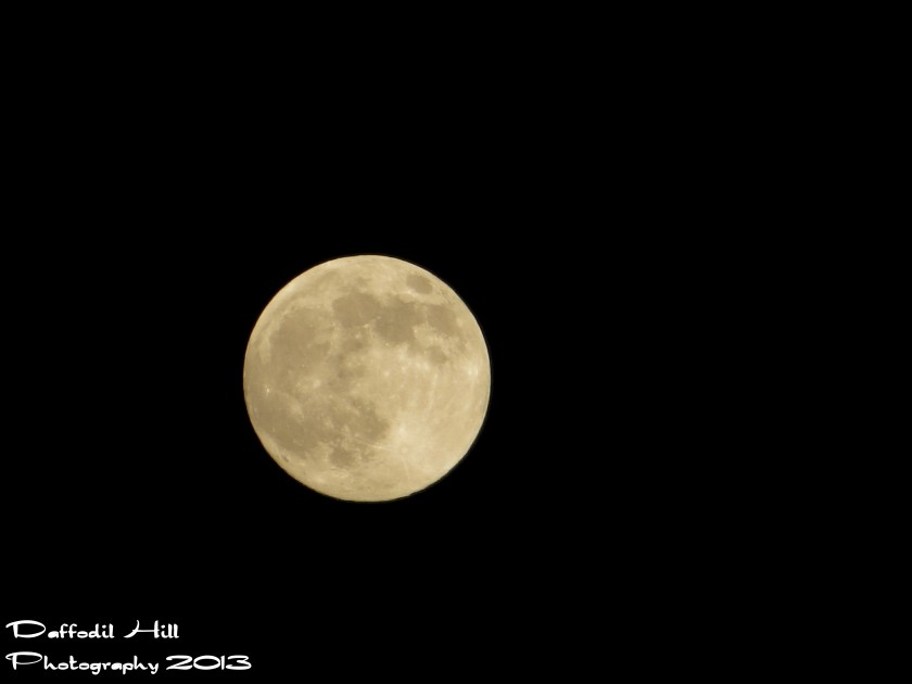 I used my SX260 on Live mode for this hand held shot last night of the Supermoon.