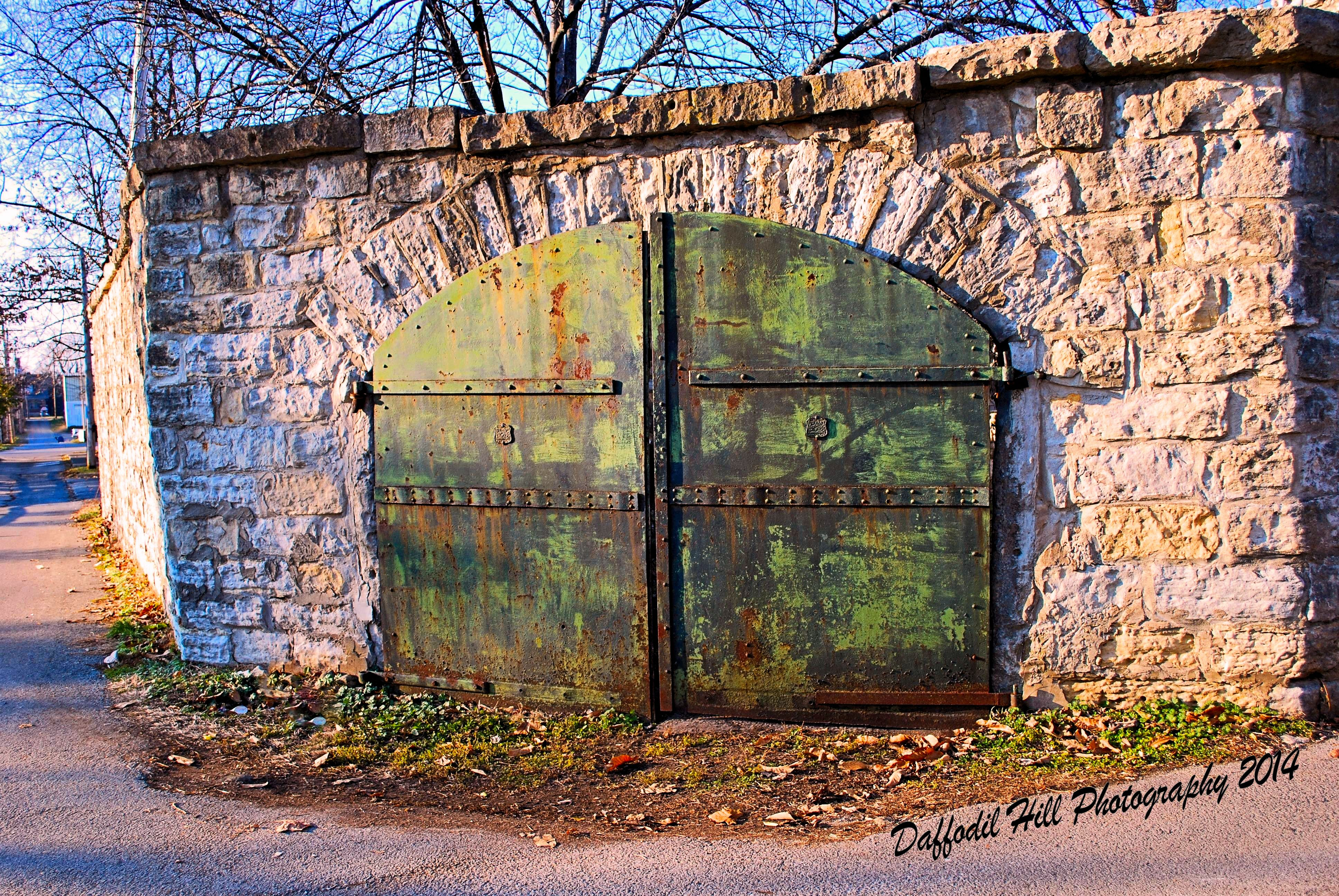 Old Doors Pretty Old Doors Daffodil Hill Photography